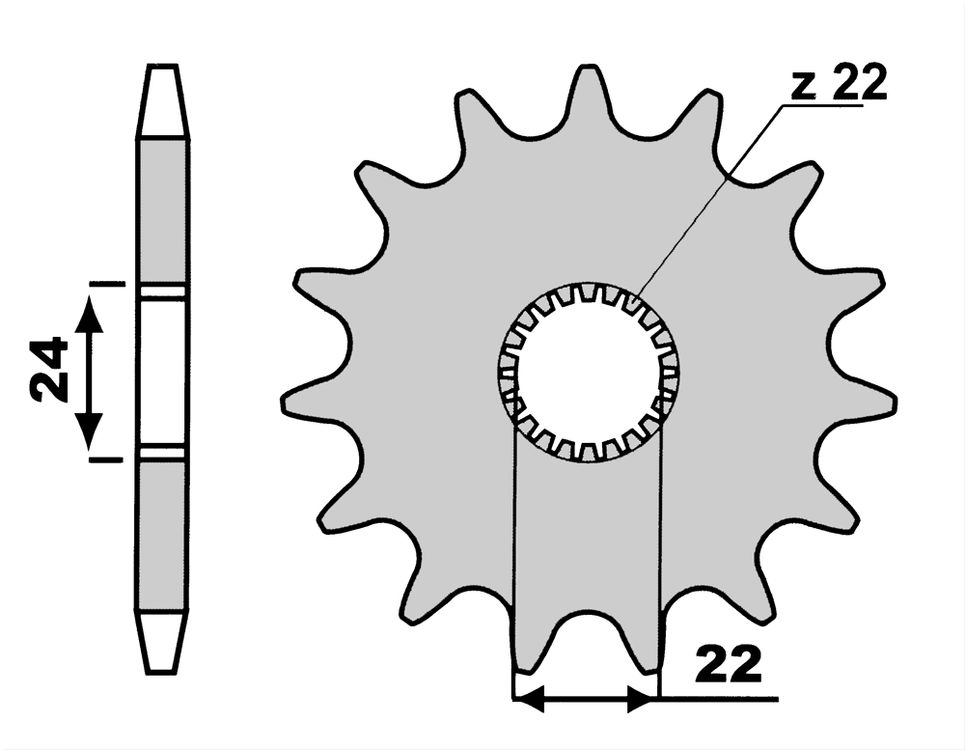 Pignoni Z16-0