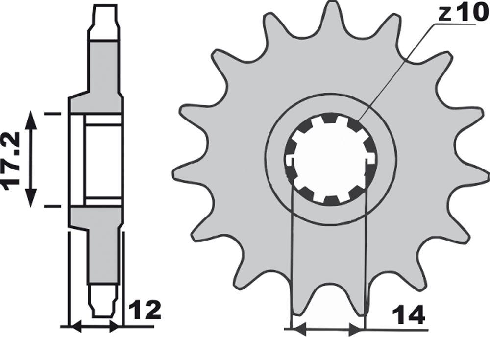 Pignoni Z13-0