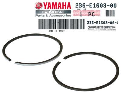 Segmenti  Yamaha OEM  40mm 2T -5458